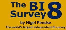 Bi Survey 8