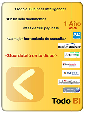 Descargar 1 año de Business Intelligence